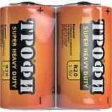Элементы питания Трофи R20-2S